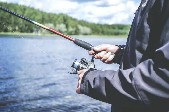 Cara memancing ikan lele