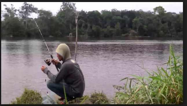 Umpan mancing di sungai